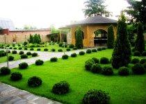 Озеленение и благоустройство 4
