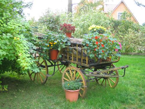 Сельский стиль сада, подбор растений
