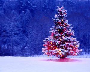 Новогоднее оформление в Казани