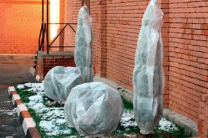 подготовка сада к зиме Казань