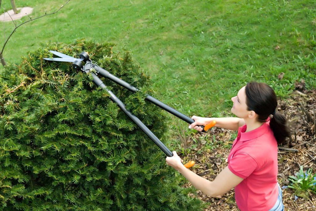 комплексное обслуживание сада